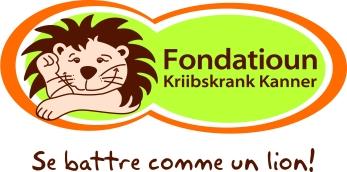 Logo Fondatioun