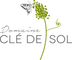 logo-cle-sol