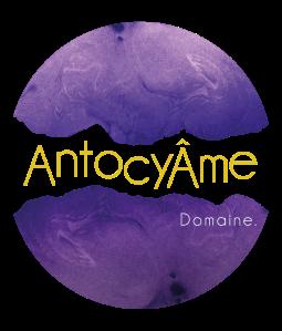 Logo-Antocyame